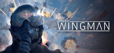Project Wingman Free Download PC Game for Mac